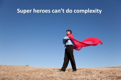 complexity superhero approach to emergency management